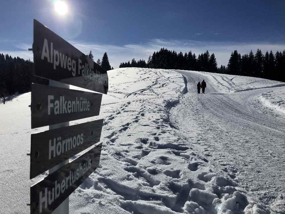 Winterwandern Oberstaufen: Über den Almweg winterwandern nach Hörmoos