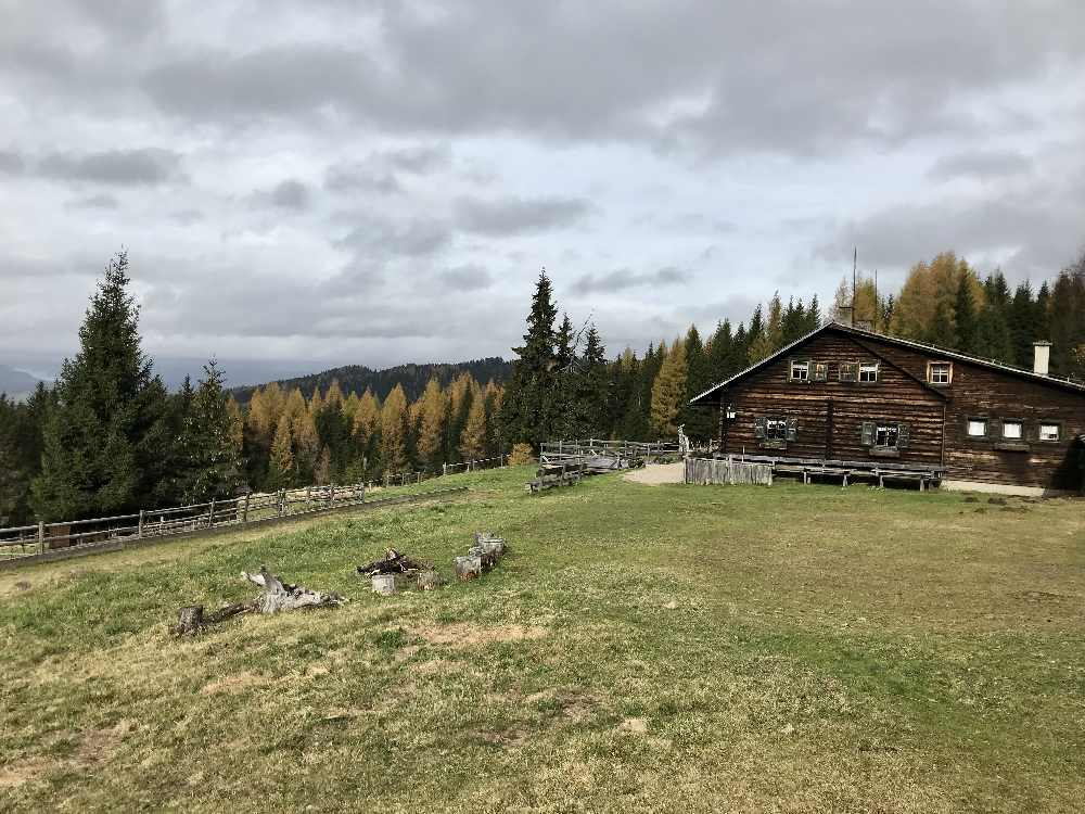 Die Anreise mit dem Auto auf die Saualpe: Bis zur Breitofnerhütte darf man fahren