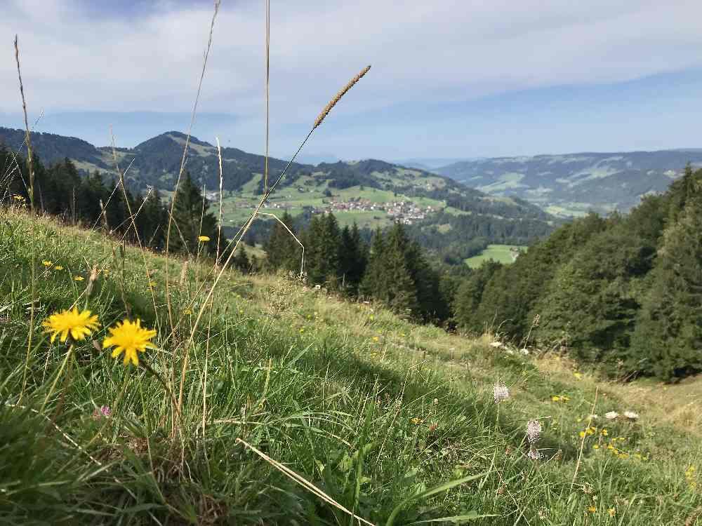 Buchenegger Wasserfälle Wanderung: So schaut das Bergpanorama am Hündle aus