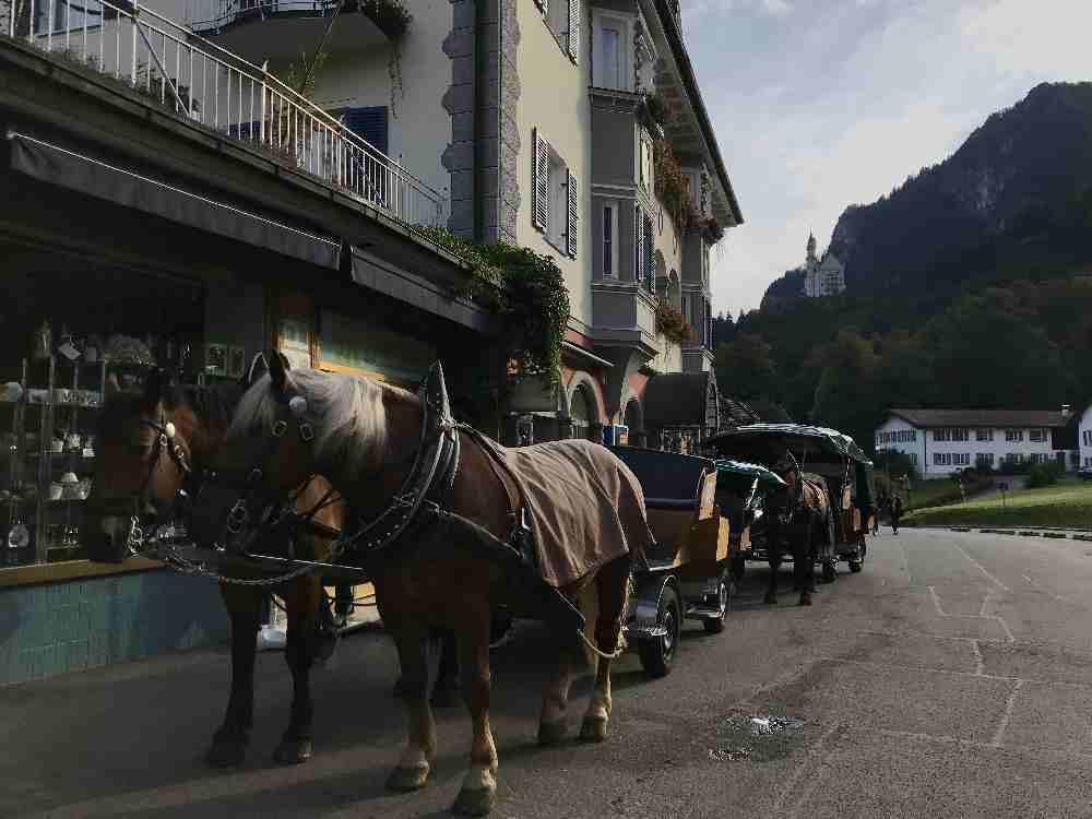 Oberhalb vom Ticketcenter stehen die Kutschen für die Auffahrt zum Schloss Neuschwanstein