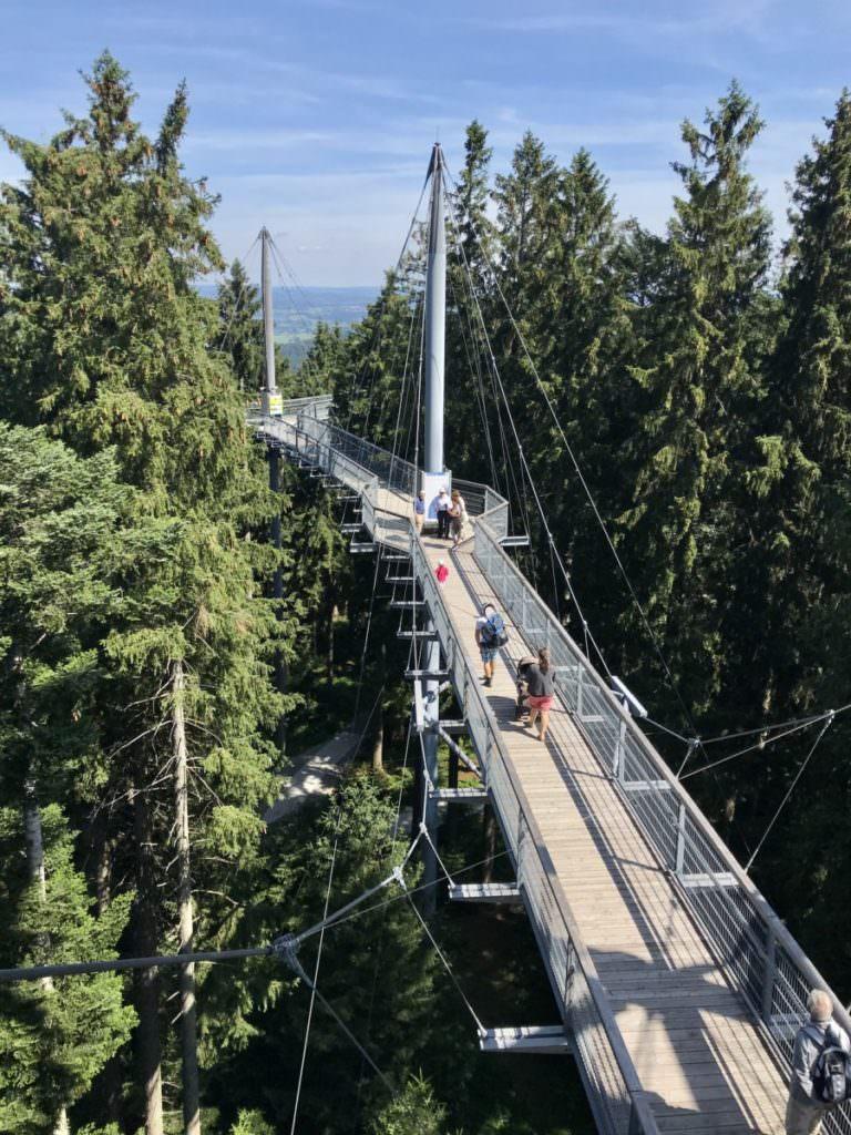 Ausflugsziele Deutschland mit Kindern: im Skywalk Scheidegg war es besonders toll