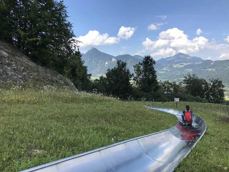 Ausflugsziele Rosenheim - die Sommerrodelbahn Hocheck in Oberaudorf