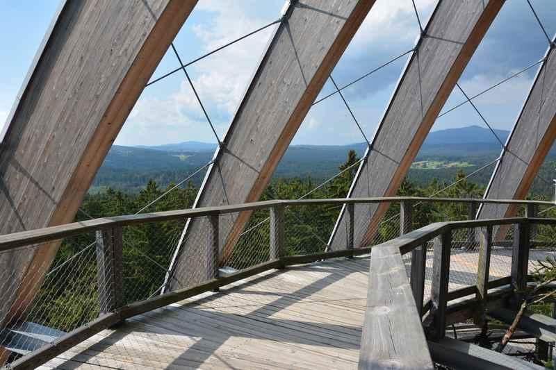 Oben am Aussichtsturm im Baumwipfelpfad Bayerischer Wald