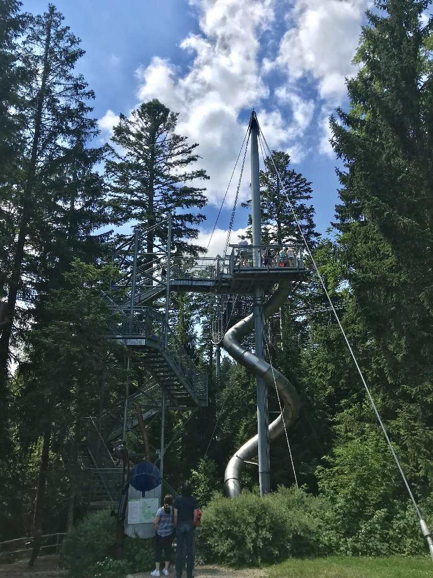 Hitze Ausflug Allgäu - der Wald kühlt und die Kinder finden Spielplätze auf den Walderlebniswegen am Skywalk