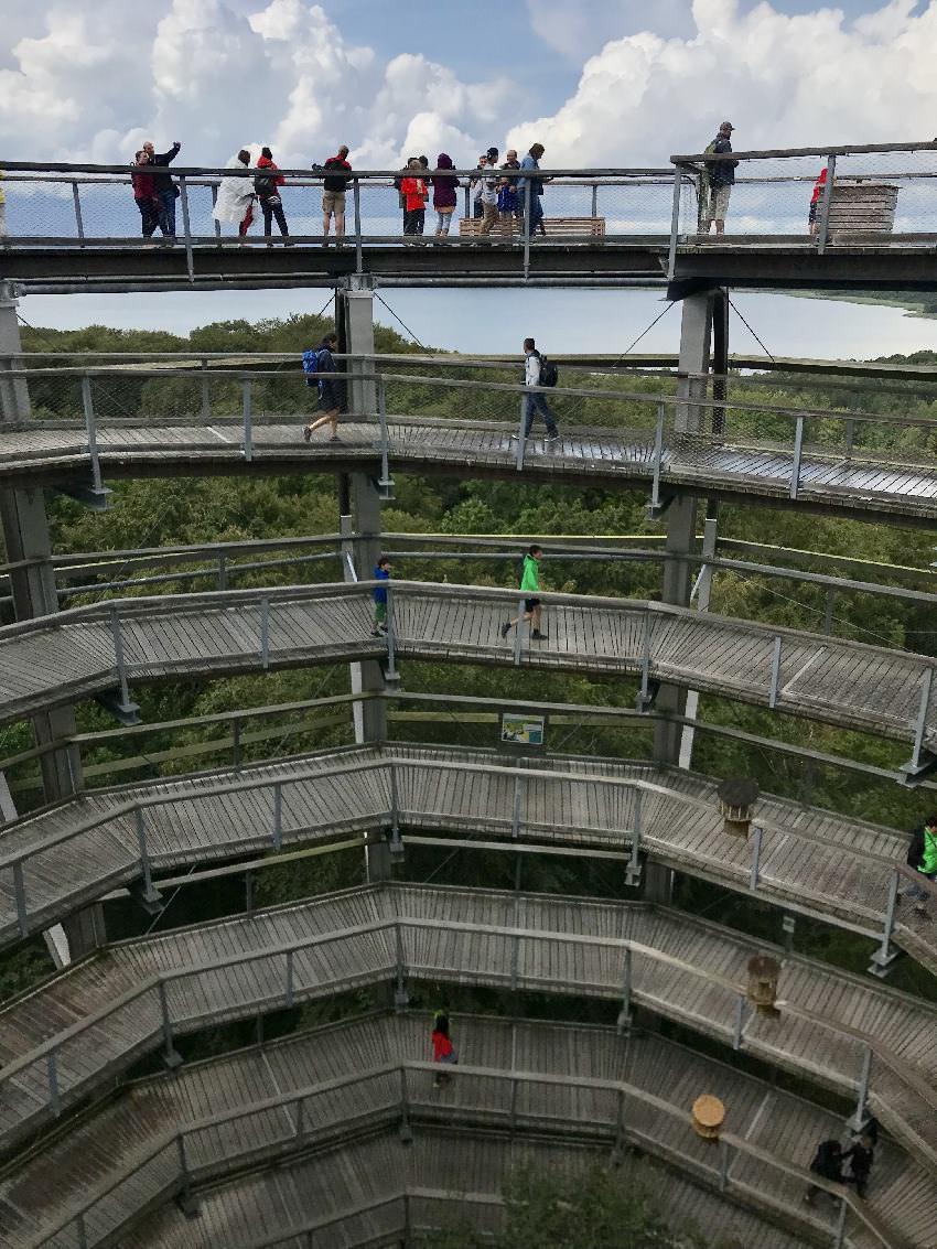 Rügen mit Kindern: Über den breiten Weg geht es Meter für Meter in Serpentinen hinauf am Baumwipfelpfad Rügen