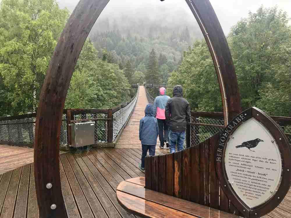 Das ist der Baumkronenweg Füssen - unser Regenwetter Ausflug mit Kindern