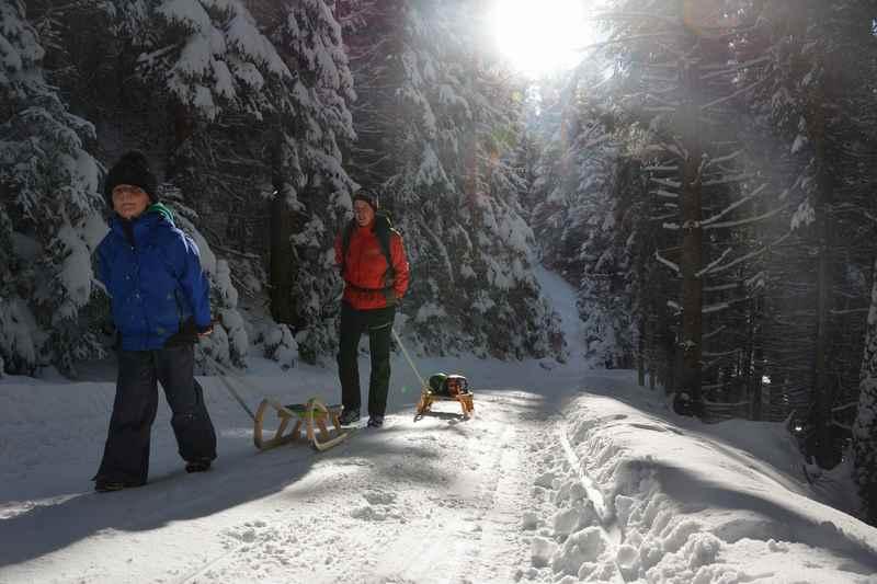 Rodelbahn Bayern in Berchtesgaden: Durch den Winterwald bergauf und dann mit dem Schlitten hinunter