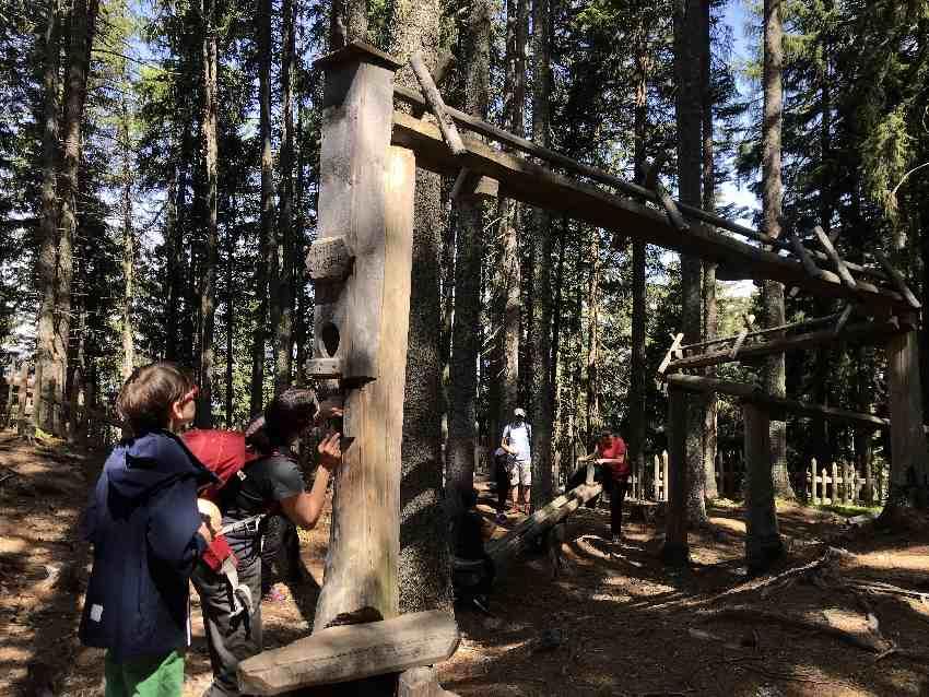 Lohnt sich der Kugelwald Besuch?