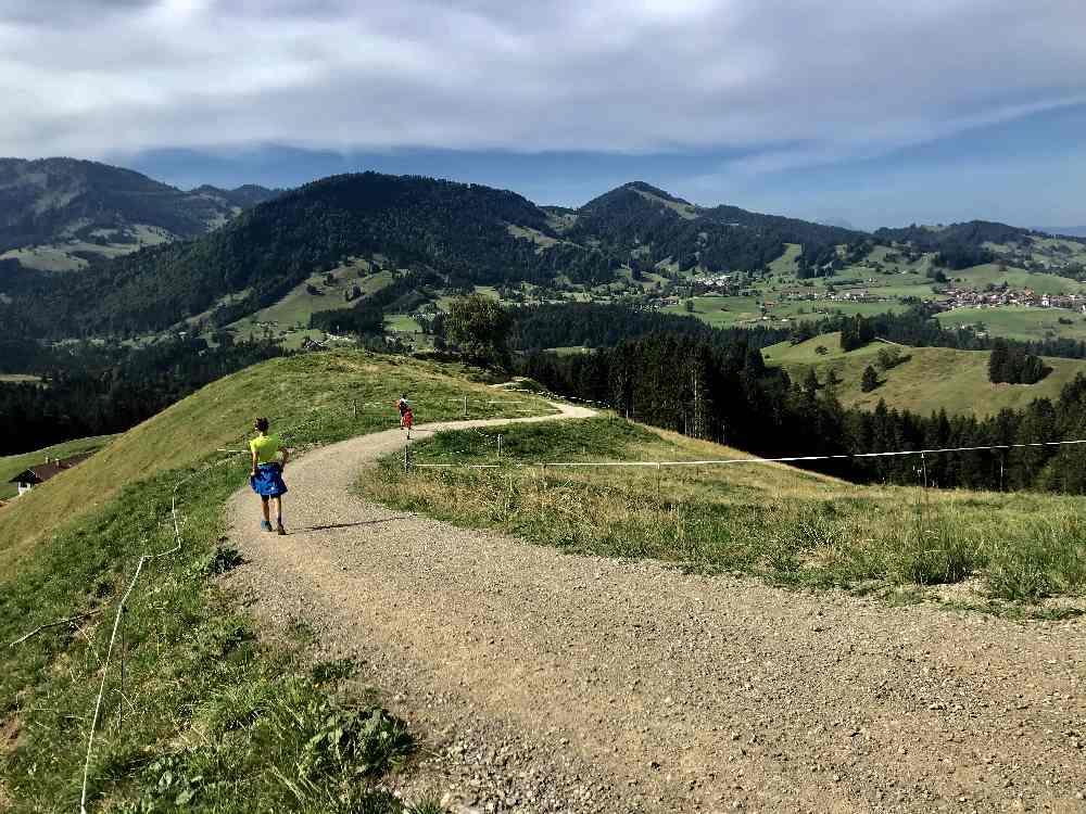 Vom Hündle über die Alpen hinunter zur den Buchenegger Wasserfällen wandern