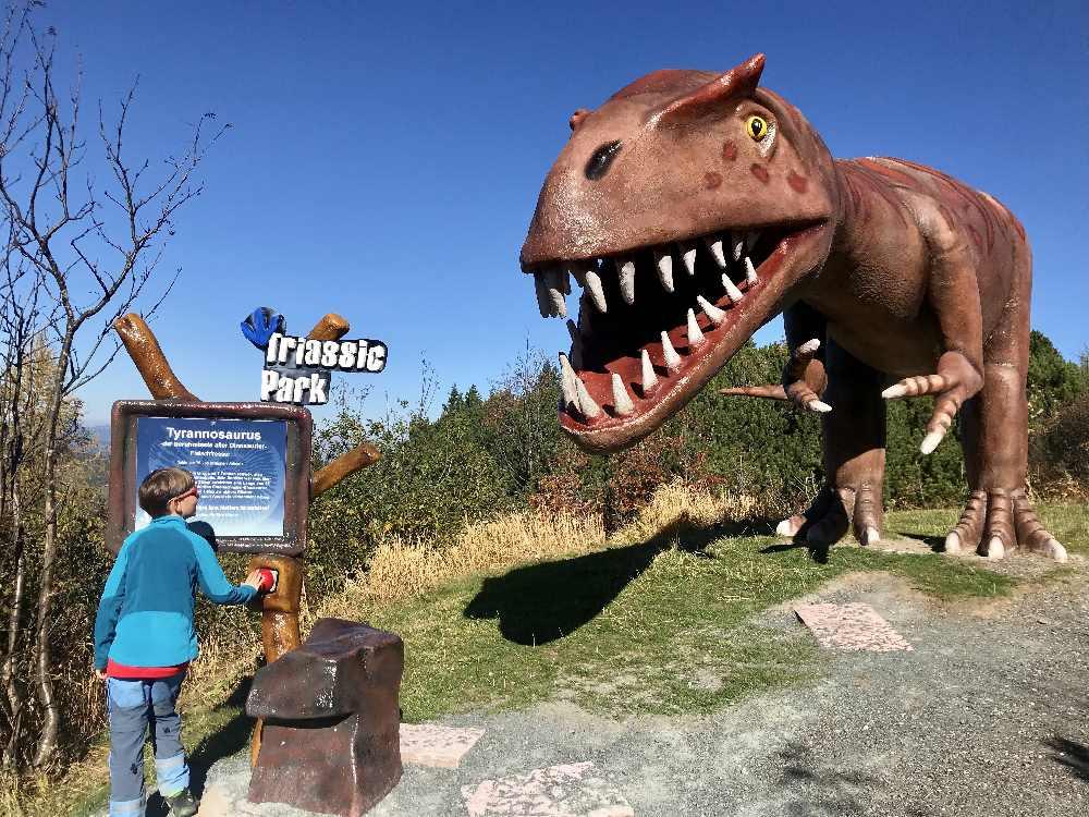 Als erstes treffen wir den Tyrannosaurus Rex - den größten Dinosaurier. Imposant für die Kinder!