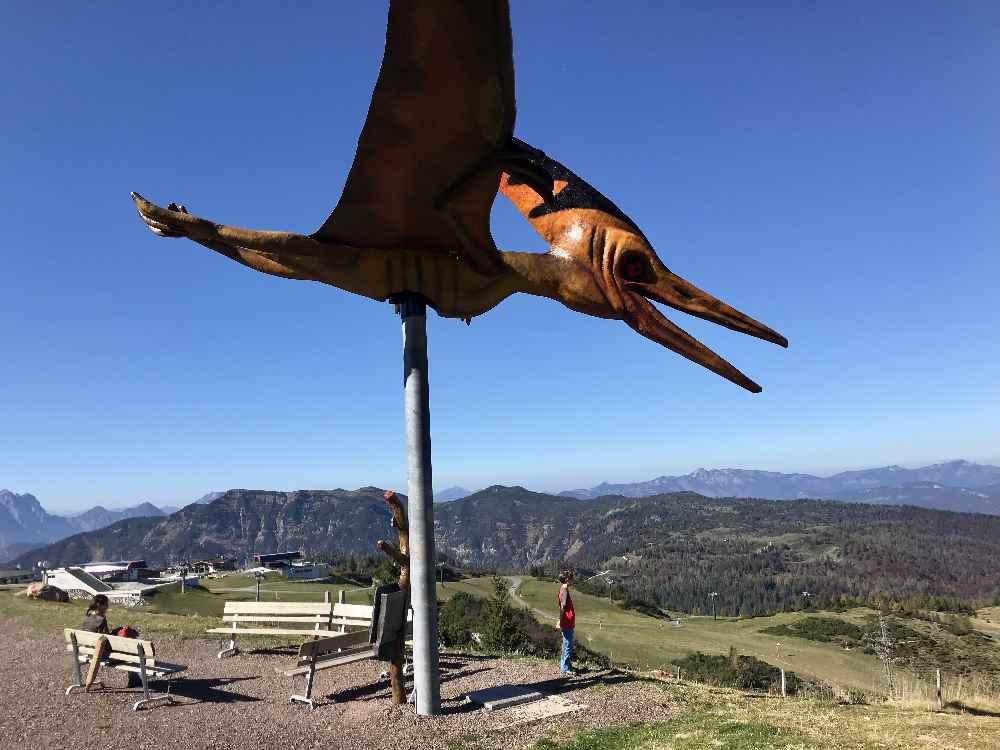 Auch zum Flugdinosaurier schauen wir - ebenfalls sehr groß im Vergleich zu uns Menschen