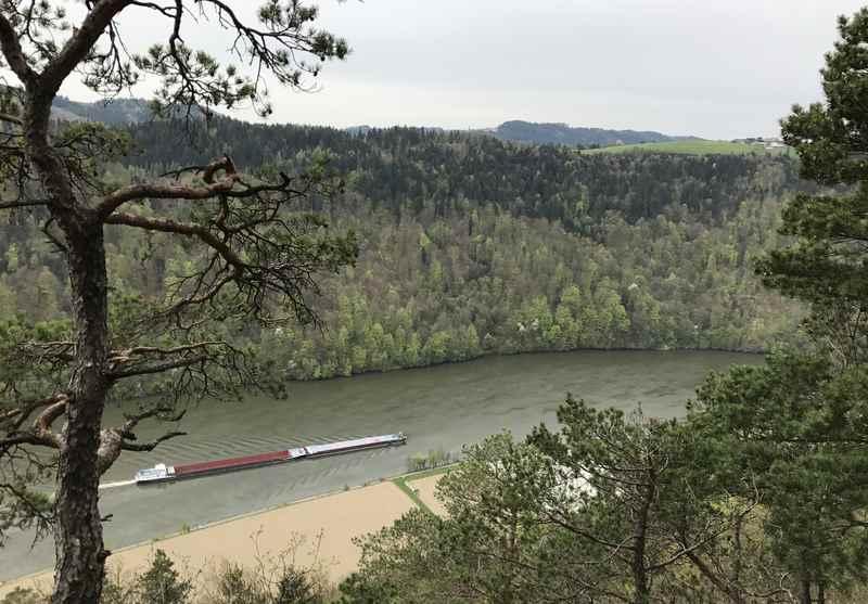 Auf dem Donausteig gibt es immer wieder Blicke hinunter auf die Donau und die Schiffe