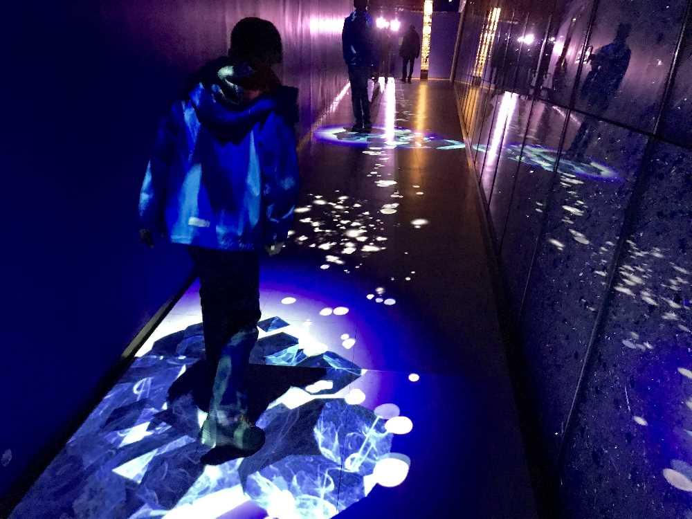 """Die """"Eisgasse"""" fasziniert unsere Kinder auch: Durch das Gehen in der Gasse entstehen Projektionen mit Licht"""
