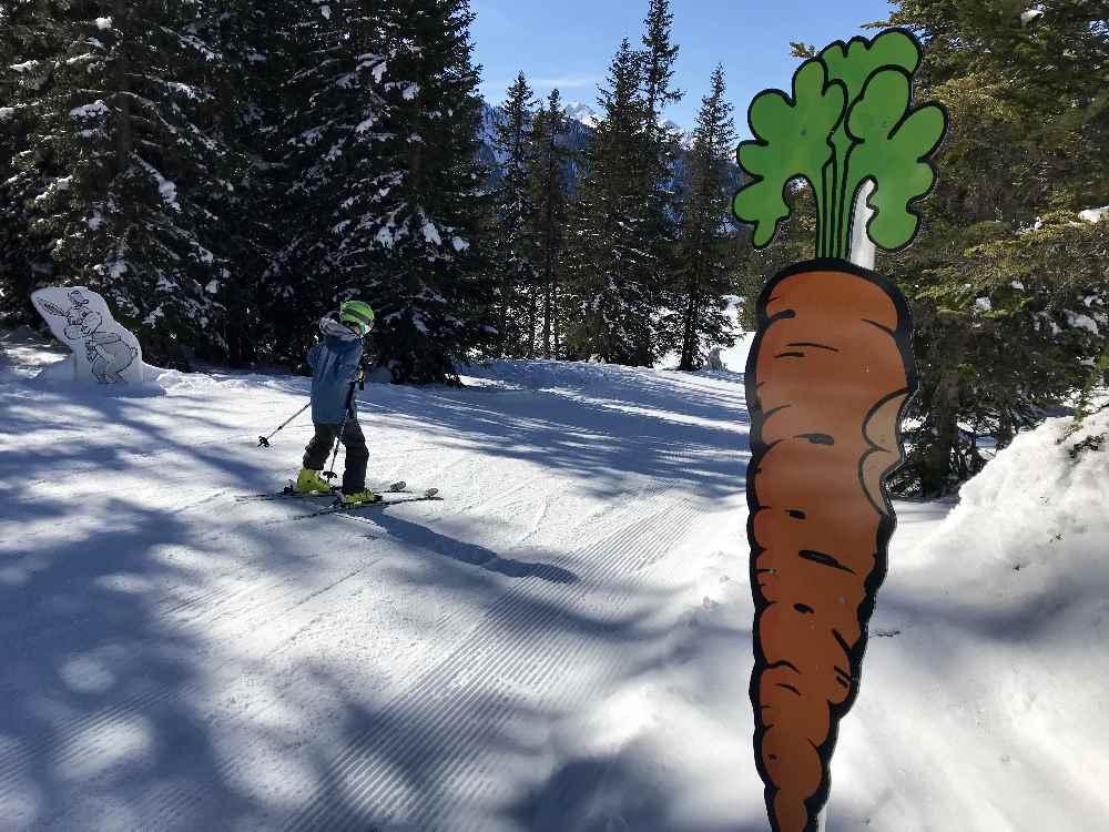 Skigebiet Steiermark - direkt neben der Skipiste wohnen