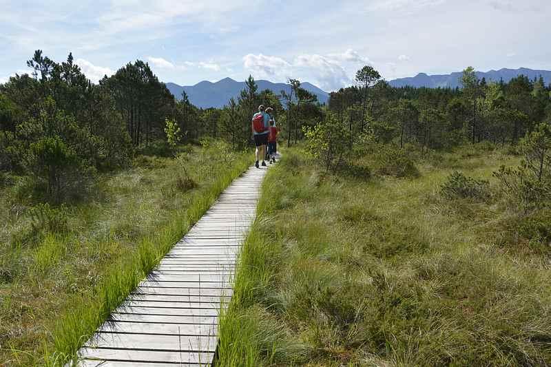 Murnau wandern mit Kindern - durch das Murnauer Moos
