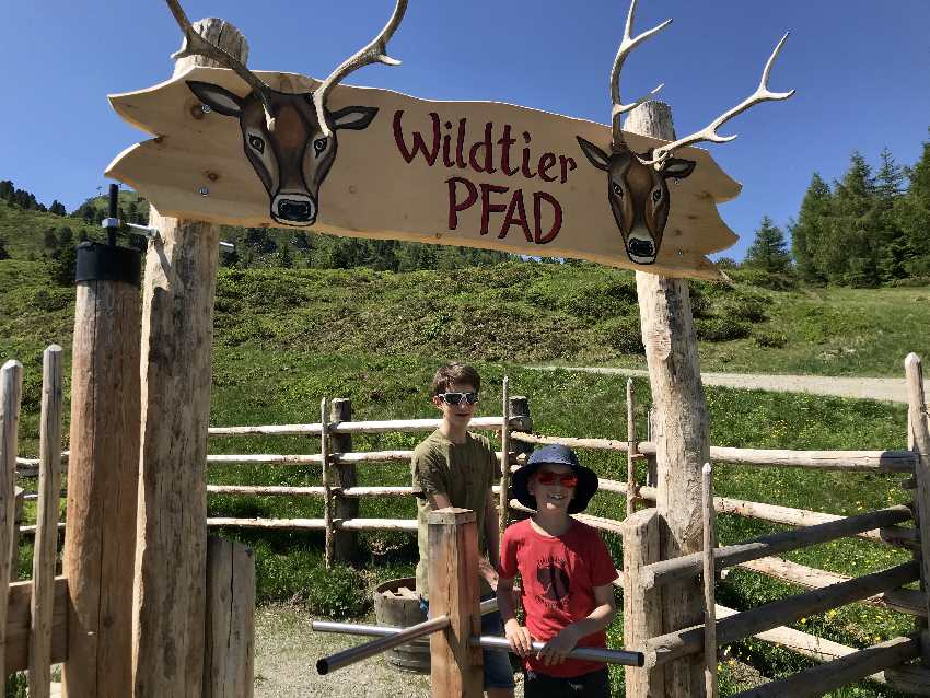 Leichte Zillertal Wanderung mit Kindern im Familienurlaub Österreich