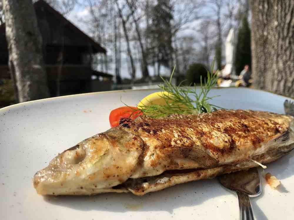 Mein Hauptgang: Frischer Fisch aus dem Starnberger See
