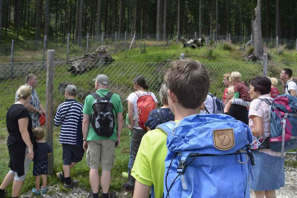 Wilder Berg Mautern Tierpark: Wir gehen zum ersten Gehege