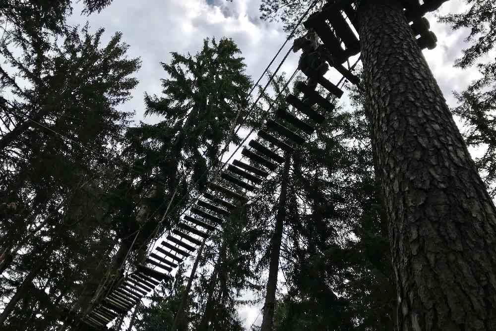 Bis zu 17 Meter hoch sind die Routen im Kletterwald in Garmisch Partenkirchen