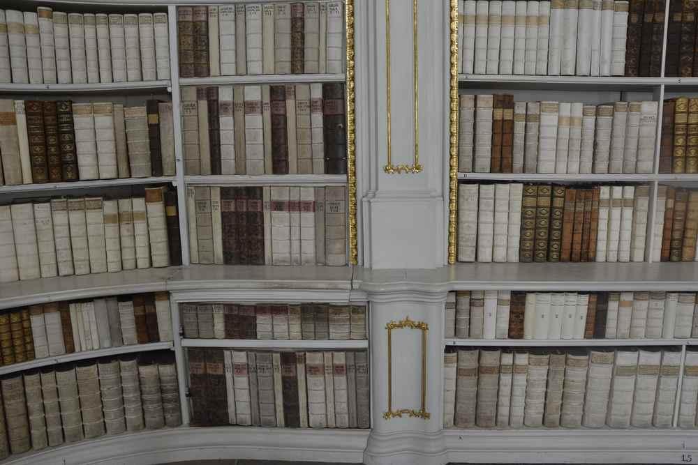Wo ist der Geheimgang? Seht ihr ihn zwischen den Büchern?