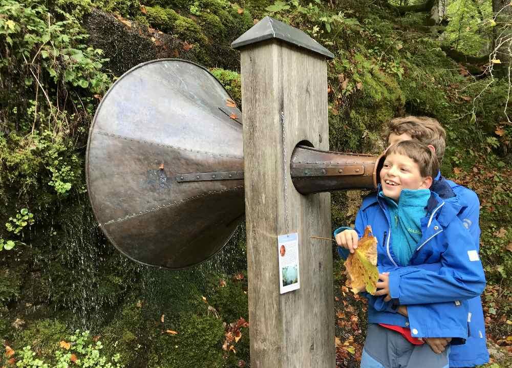 Für Kinder interessant: Die Stationen rund um den Gosausee