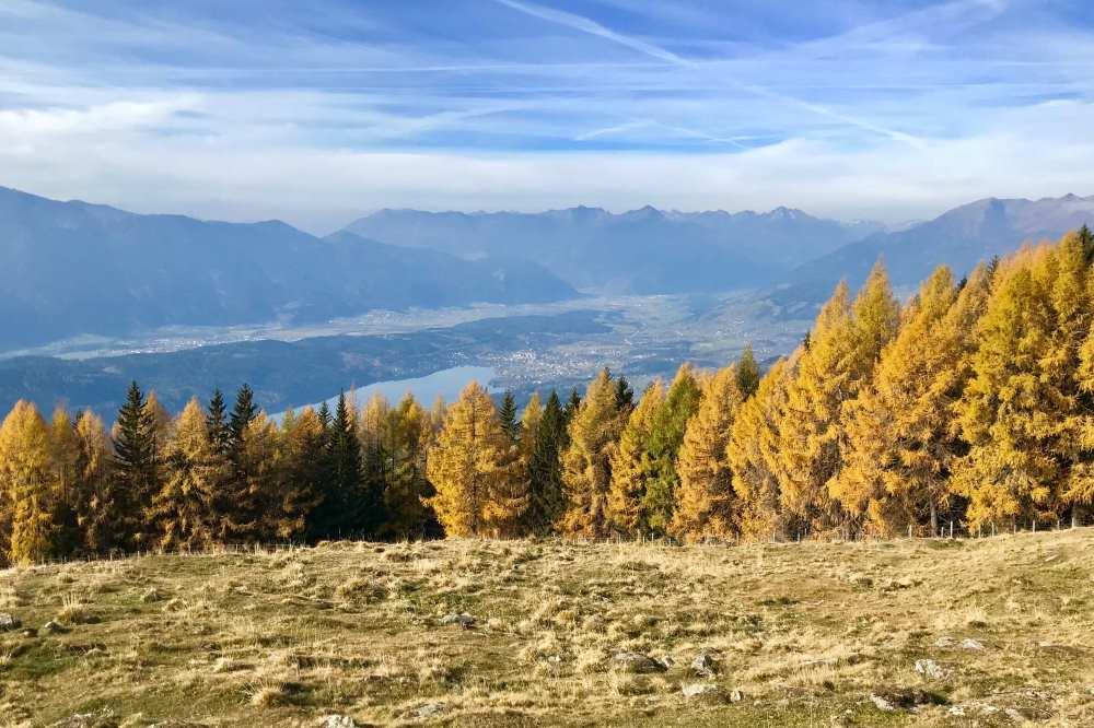 Herbsturlaub mit Kindern:  Golden färben sich im Herbst die Bäume. Zuerst Ahorn und Buche, später die Lärchen wie hier in Kärnten