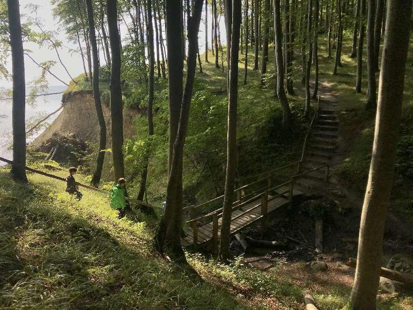Am Hochuferweg Rügen wandern - die kleinen Schluchten werden mit Stufen überwunden