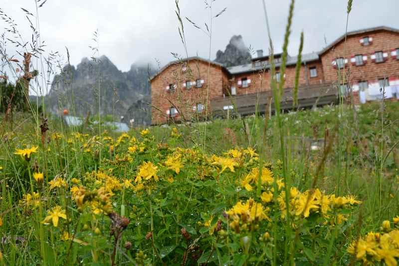 Zur Hofpürglhütte mit Kindern in Filzmoos wandern, Salzburg