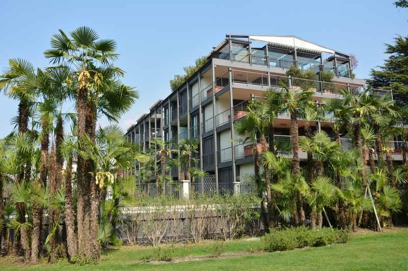 Familienhotel Gardasee - direkt am See mit Palmen
