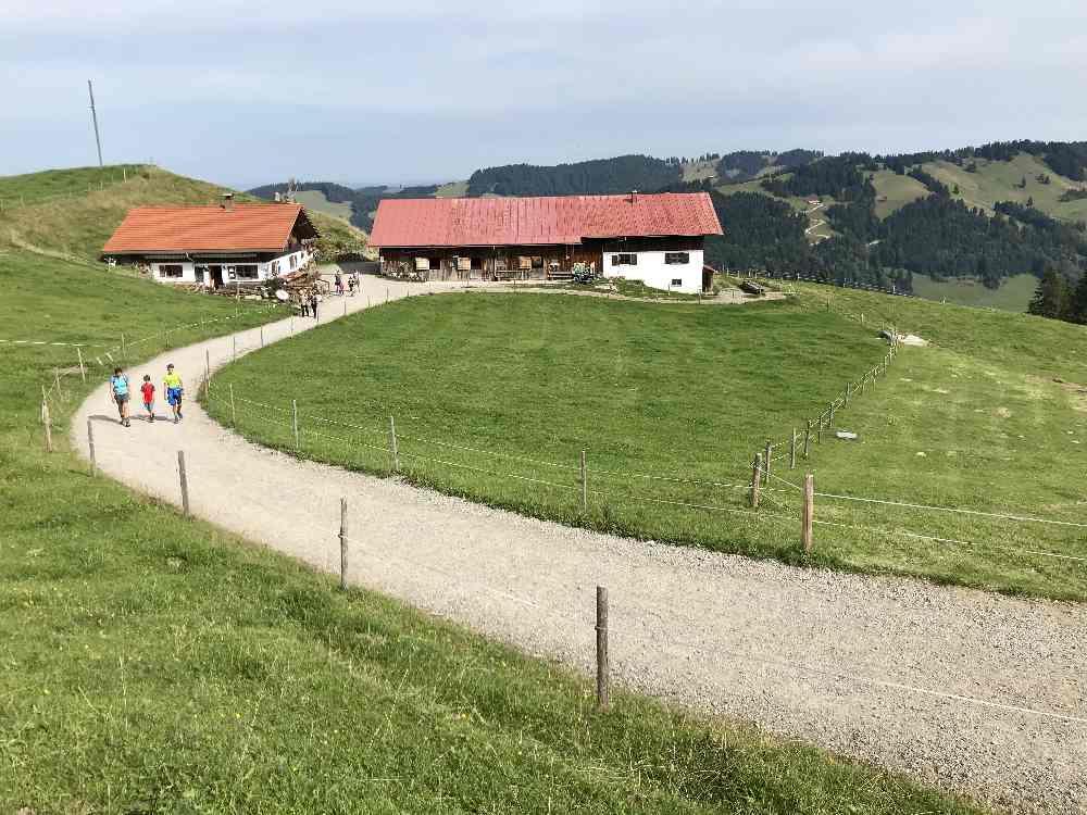 Buchenegger Wasserfälle Wanderung: Von der Bergstation der Hündle Bergbahn geht es in Richtung Hündle-Gipfel