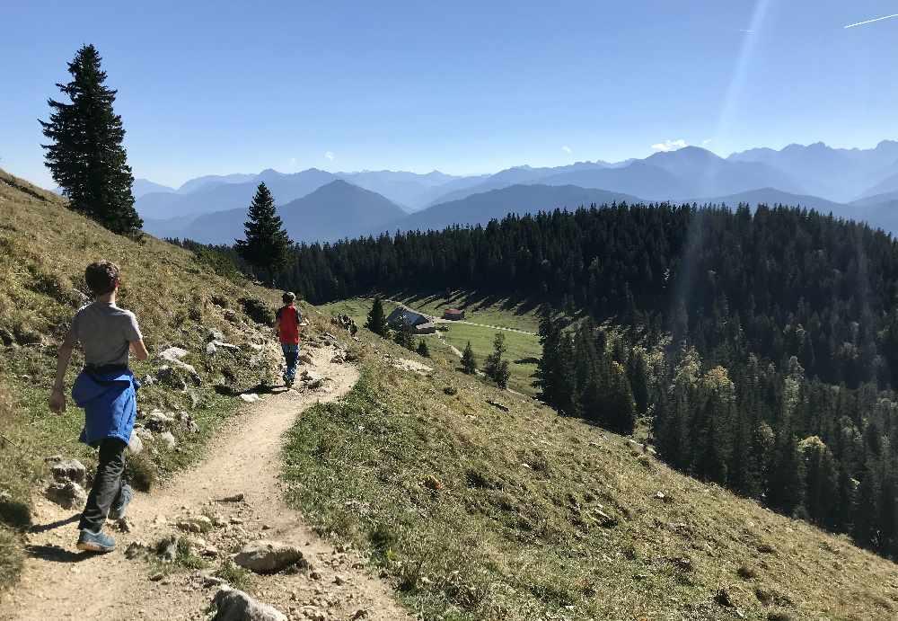 Walchensee wandern mit Kindern:  Unterhalb des Gipfels folgen wir dem Wandersteig zur Jocher Alm