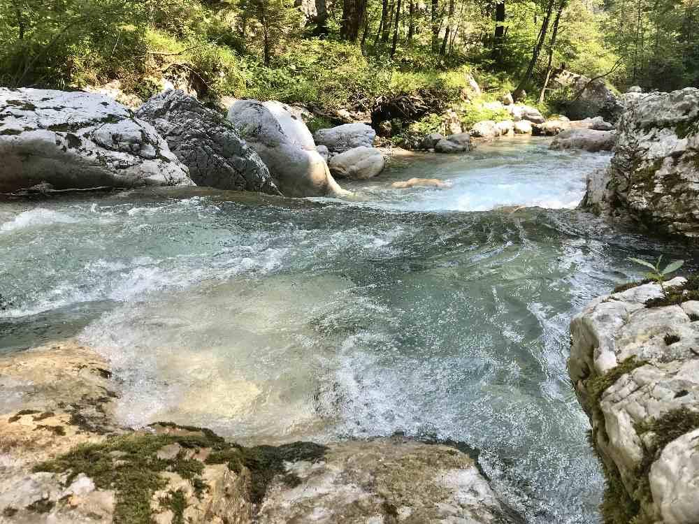 Wunderbar zu beobachten - das glasklare Wasser in der Tscheppaschlucht