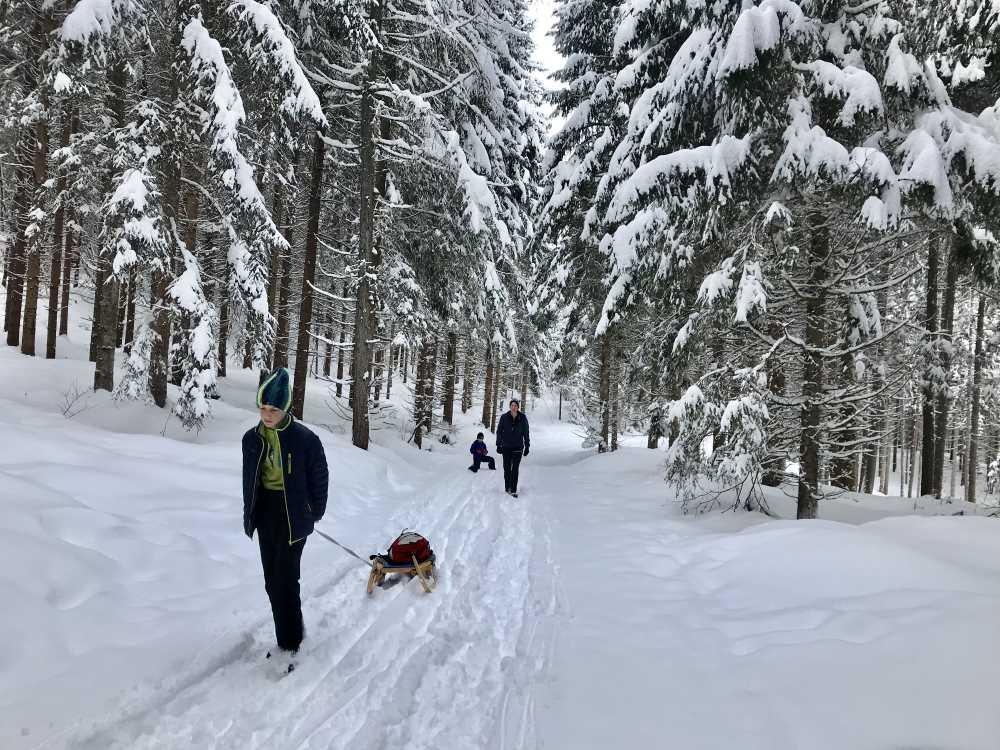 Rodeln mit Kindern - durch die Winterlandschaft hinauf wandern