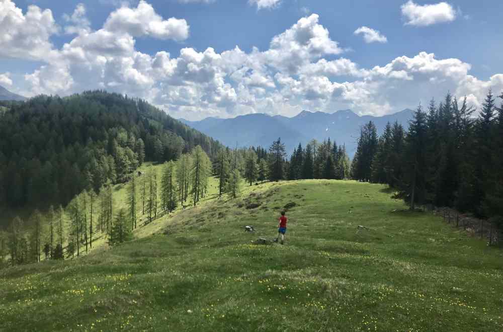 Der bewaldete Gipfel links ist der Hochtraten - uns gefällt die Wiese davor