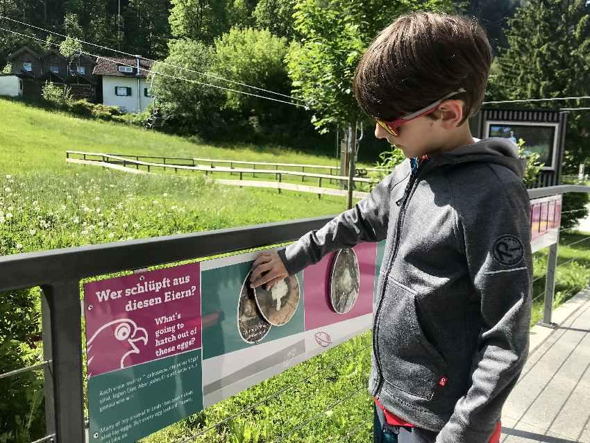 Während wir auf den freien Liftsessel warten, können die Kinder etwas über Tiere lernen