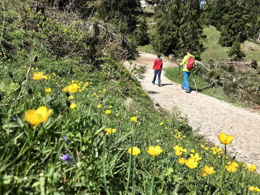 Bei der Bergstation Kaiserlift Kufstein startet unsere Wanderung mit Kindern