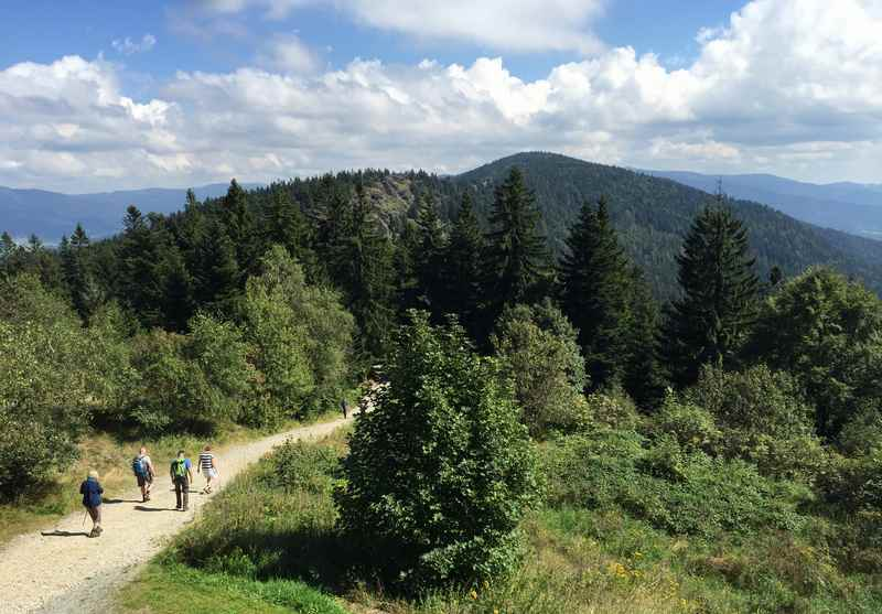 Auf dem Kaitersberg wandern mit Kindern in Bayern