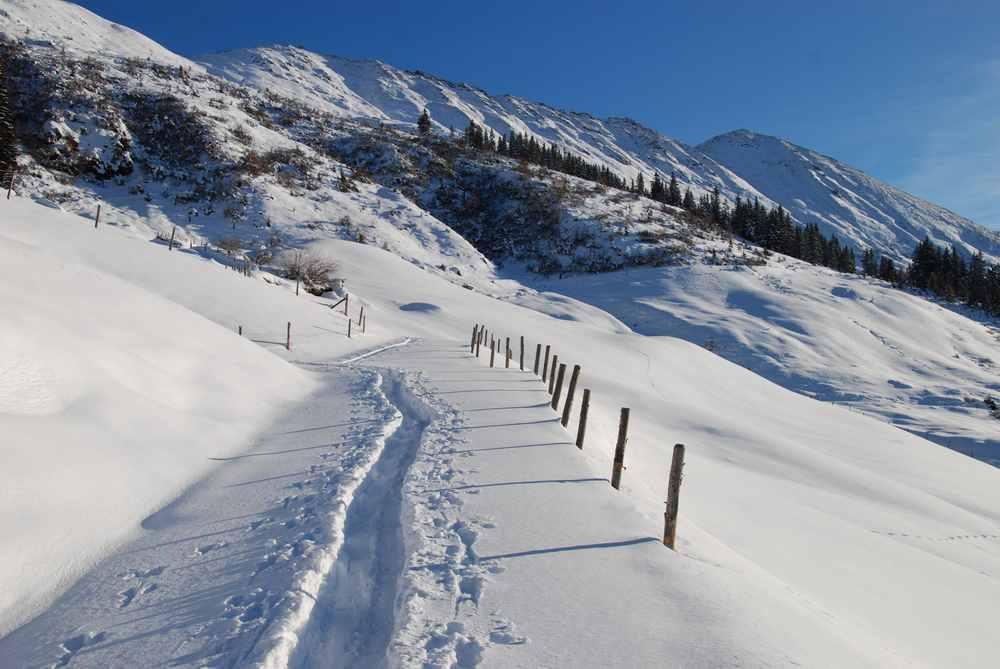 Diese Skitouren mit Kindern empfehlen wir
