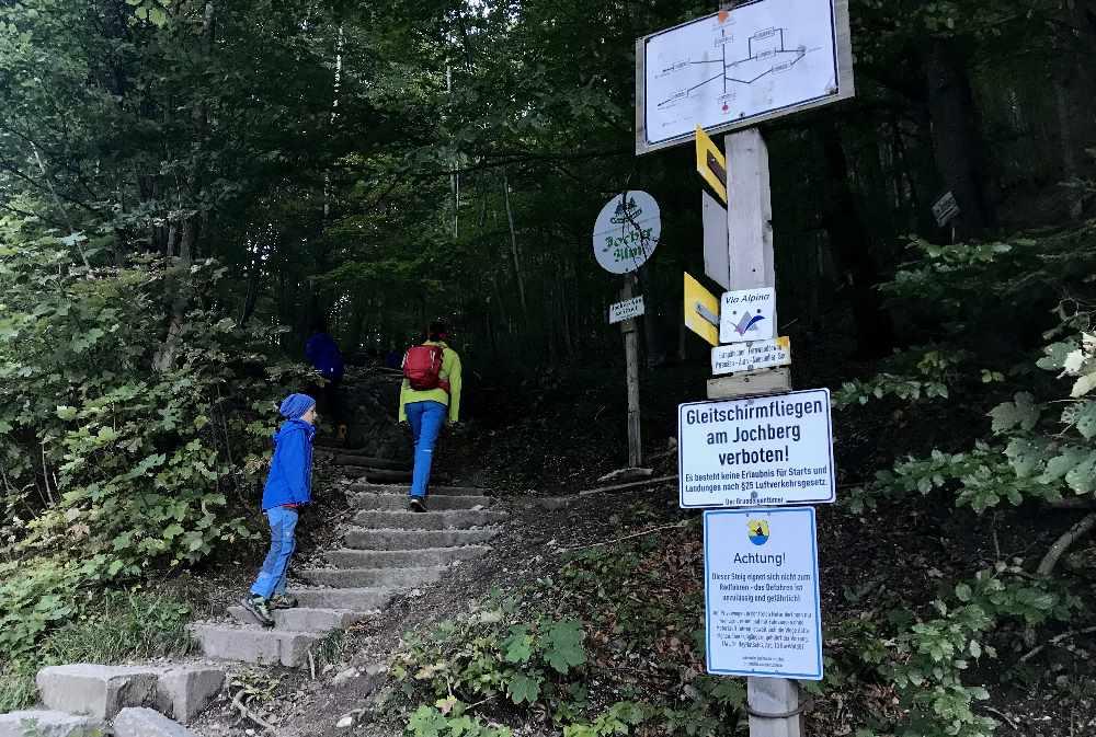 Walchensee wandern mit Kindern: Bei der Kesselberghöhe oberhalb vom Walchensee beginnt die Wanderung auf den Jochberg