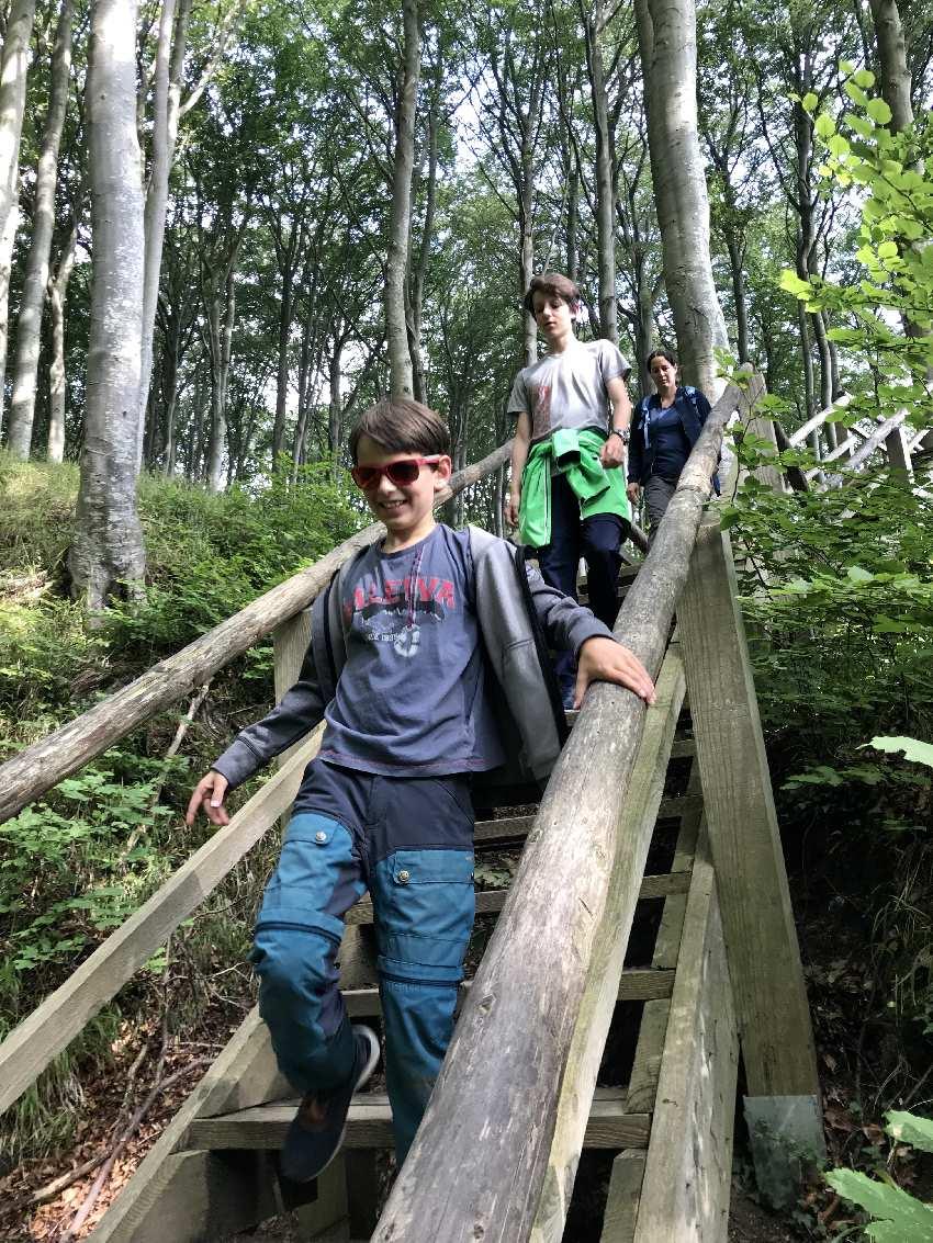 Vom Hochuferweg geht es über die Holztreppe Richtung Kreidestrand
