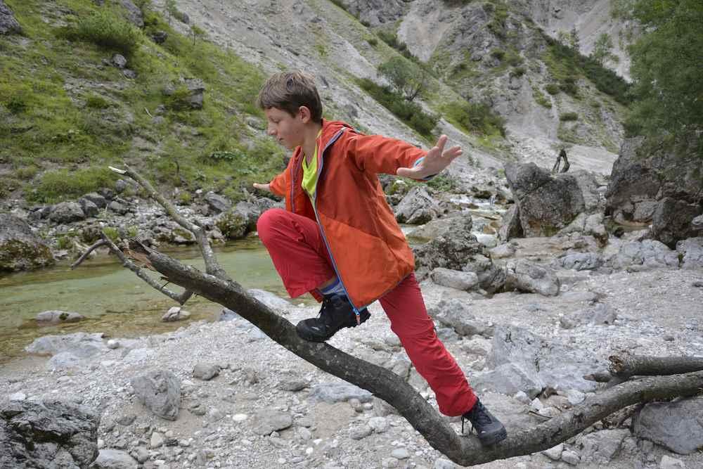 Der Große balanciert auf einem umgefallenen Baum am Ötscherbach