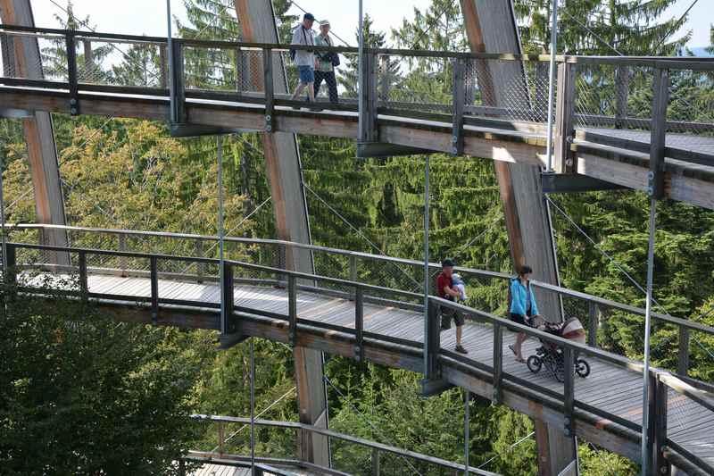 Aussichtsreiche Kinderwagen Wanderung am Baumwipfelpfad im Bayerischen Wald