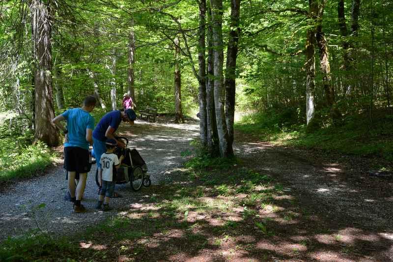 Siebenhütten: Eine schöne Kinderwagen Wanderung am Tegernsee, bei der auch größere Geschwister schön wandern können