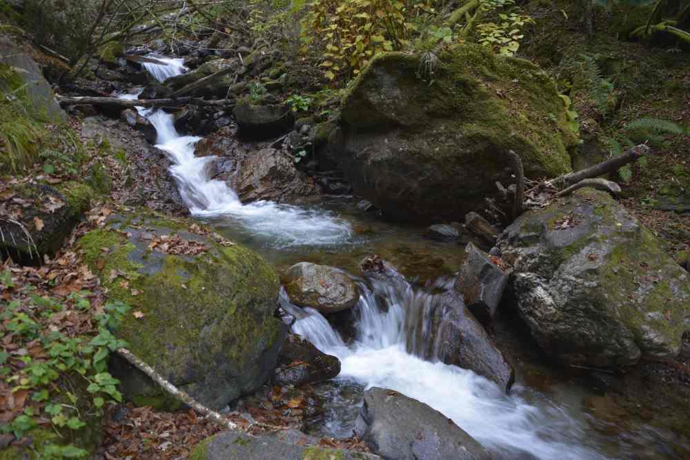 So fließt der Bergbach von der Millstätter Alm in Richtung Millstätter See