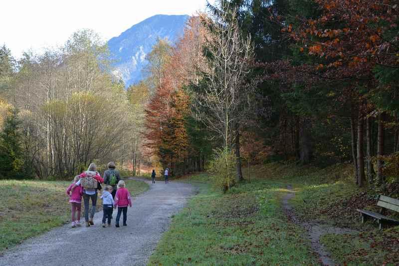 Auf dem breiten Kramerplateauweg wandern mit Kindern und Kinderwagen zum Schmölzer See