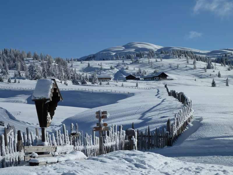 Lüsner Alm: Das Panorama über die Alm auf der Kreuzwiesenalm Rodelbahn in Südtirol