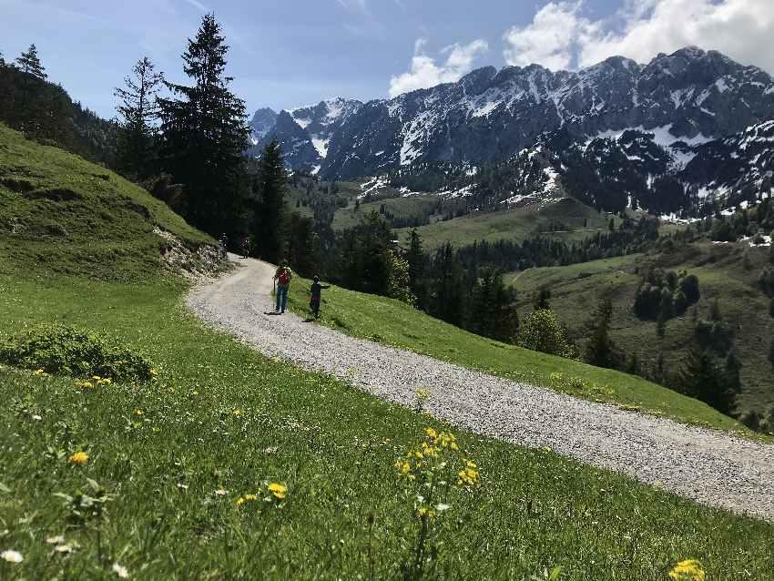Kufstein wandern mit Kinderwagen - auf dem breiten Weg vom Brentenjoch zur Kaindlhütte