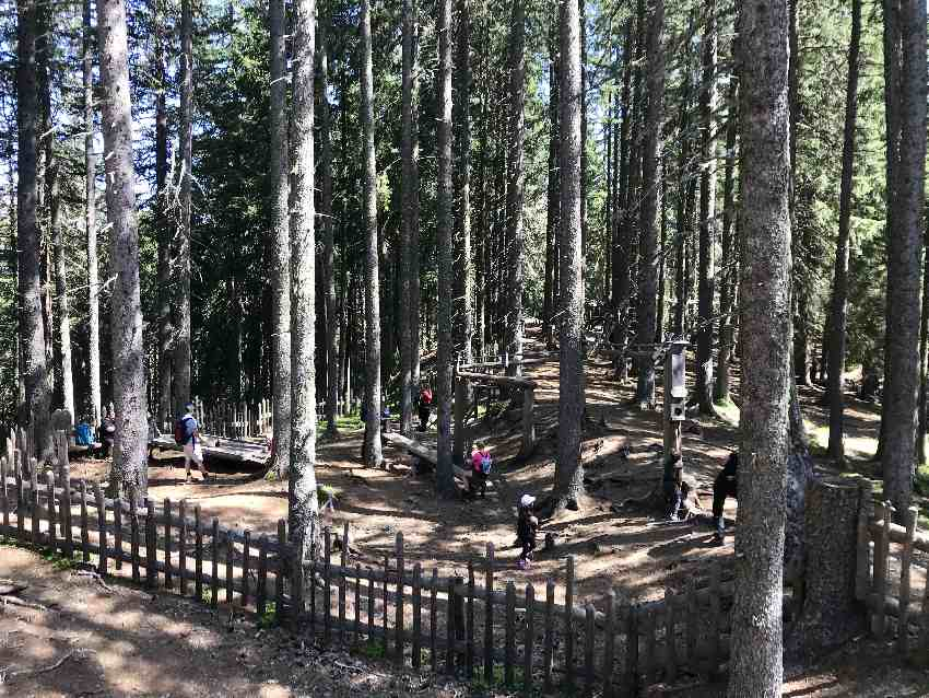 8000 Quadratmeter groß ist der eingezäunte Spielplatz im Wald am Glungezer
