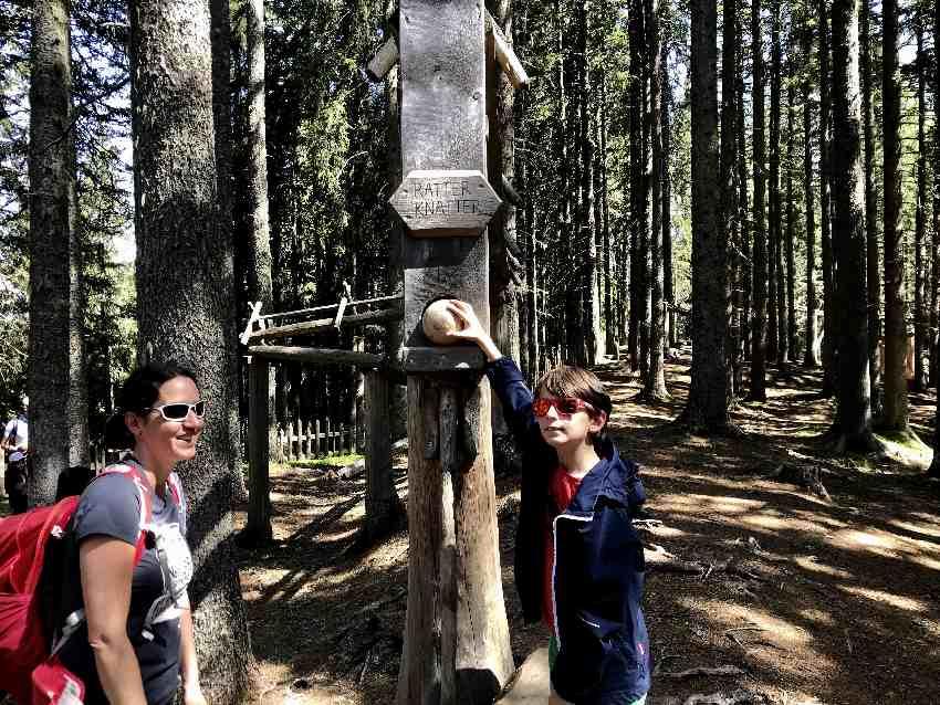 Das ist eine der großen Holzkugelbahnen im Kugelwald Glungezer, bei Hall in Tirol