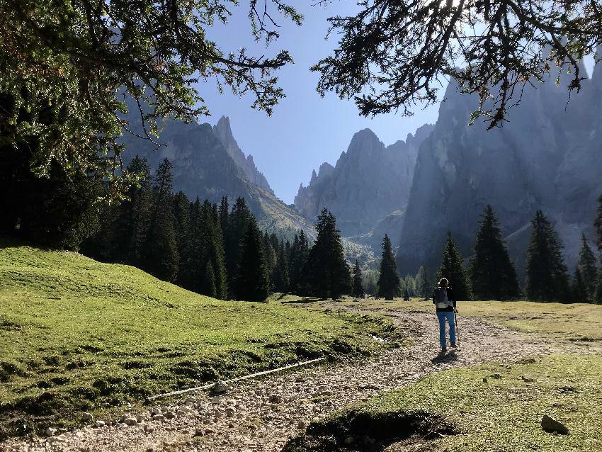 Anfangs musst du Richtung Langkofelhütte auf einer Forststraße wandern